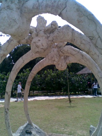 Bottle Tree Park-dinosaur bones